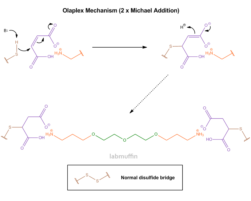 olaplex-mechanism