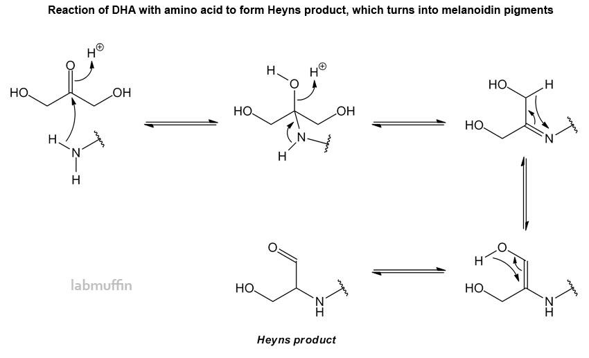 mechanism-DHA-melanoidins