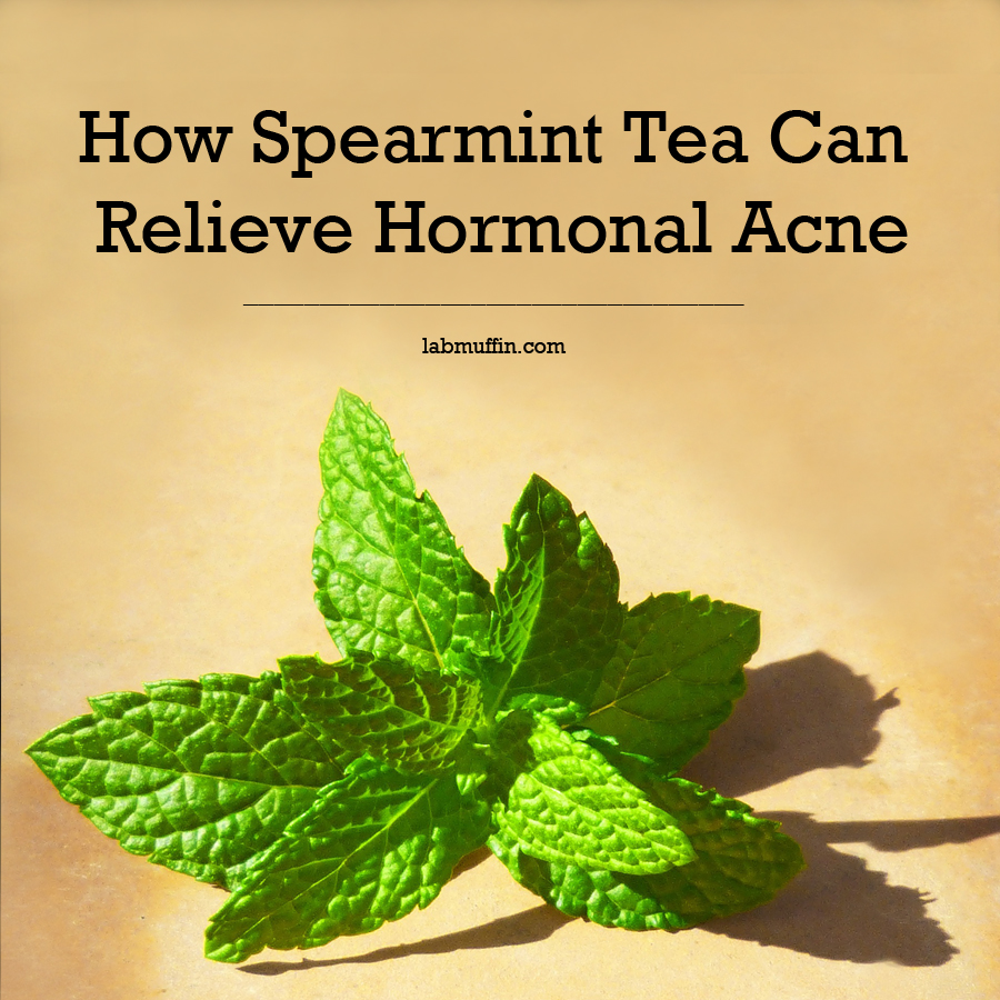 spearmint-tea-hormonal-acne