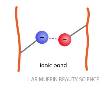 ionic bond salt linkage