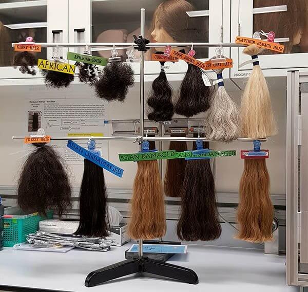 hair samples P&G lab