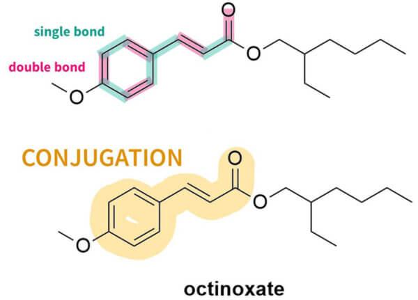 octinoxate conjugation