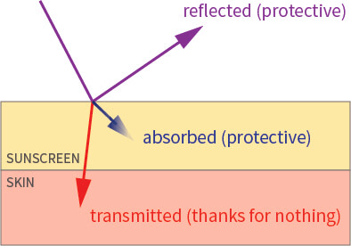 uv absorbed transmitted reflected